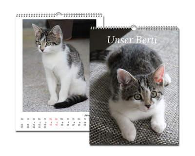Kalender 20x30 Glanz Weiß Echtfoto